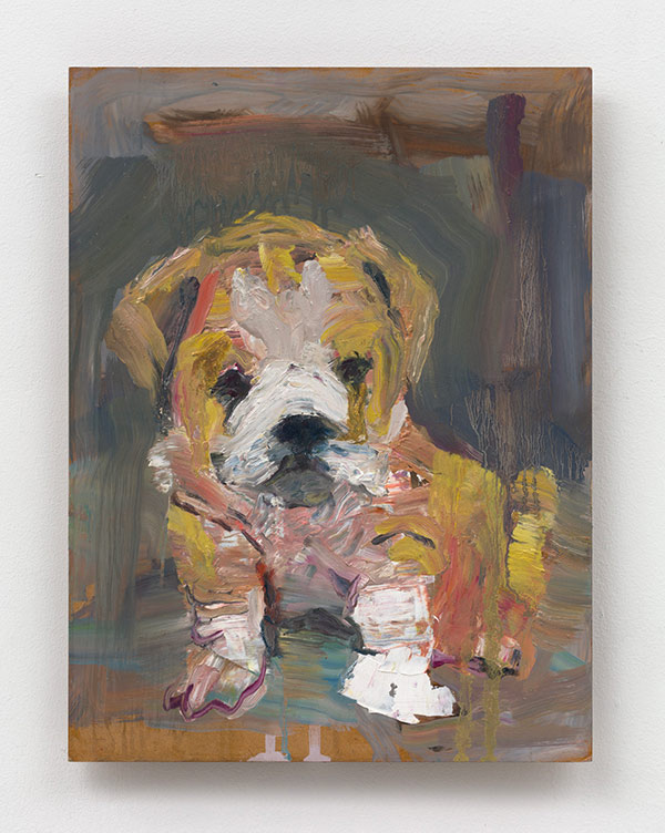 Brown Puppy with Wrinkles - 14 x18 - oil on canvas